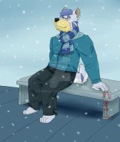 Snowfall [COMM] by timmylois2