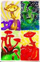 Shrooms by MWaters