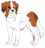 TJ the Kooikerhondje by Searii
