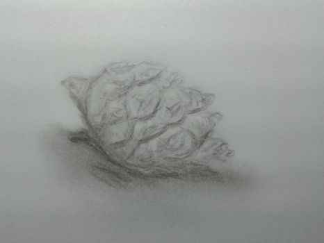 Pine cone by quelity18
