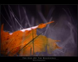 The End... Of The Beginning by MegaTherionus