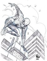 Jumping SPIDER by Wieringo