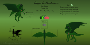 Dragon's Ref Sheet 2.0 by DragonThunderstorm