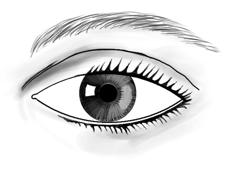 Human Eye by inventorM