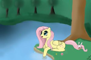 Fluttershy at the lake [EDITED] by Ducera