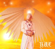 Yue- Angel of the Moon by Toboe