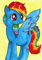 ACEO - Dash by bittykitty