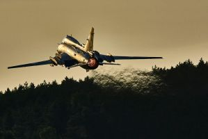 Evening flight by Konrad22