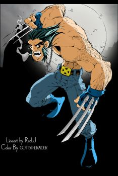 Wolverine Color by GUTTSTHERAIDER