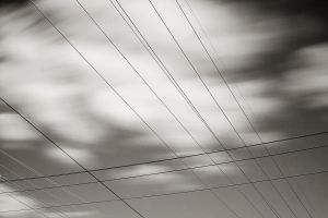 Powerlines by TMPhotographia