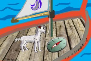 Boats and Birds Animated VIDEO link by foxstory