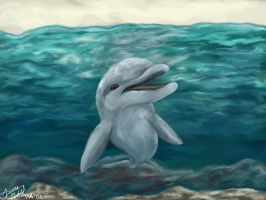 A Dolphin by TaksArt