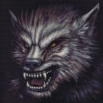 Fluffy the Werewolf by nudge1