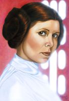 Star Wars portraits: Leia by vividfury