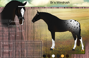 DH Windrush by Minthiy
