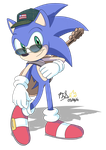 Commission: Stylish Sonic by RGXSuperSonic