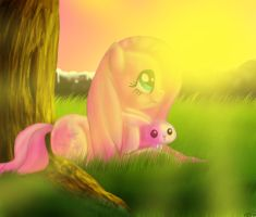 Fluttershy and angel and the sunset by XxTheShatteredxX
