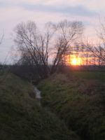 Sunsetting over the stream by brittanyandalvin