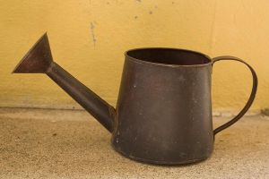 Wateringcan I by KW-stock