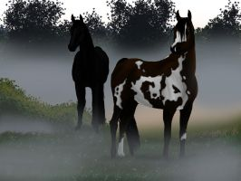 Morning Mist by ClopinMiseried