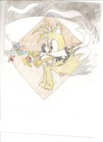 tails muddyNcheese - taiream46 by TailsFanclub