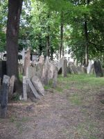 the old jewish cemetery 3 by Meltys-stock
