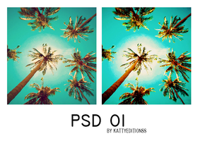 PSD 01 by KattyEditionss