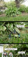 Caterpillar Chronicles: What's in a Name? by naturegirl52180