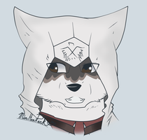 Wolf Kenway by Dreaming-Dog