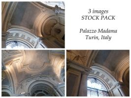 Stock Pack Palazzo Madama Ceiling by XiuLanStock