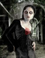 Love Lost by sinistra