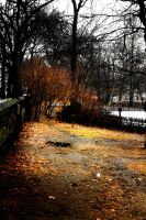 Central Park III by Lucky13Grl