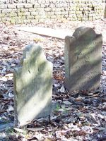 Headstones : 20 by taeliac-stock