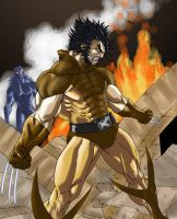 Wolverine Ablaze by know-one-draws