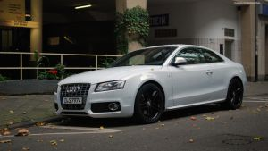 Audi S5 B8 by ShadowPhotography
