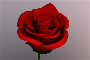 Red Rose by Katza