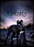 Grizzly Mountain by reinafawn