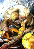 Sabretooth ATC by DKuang