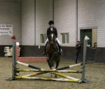 Amira showjumping by RisingAngelss