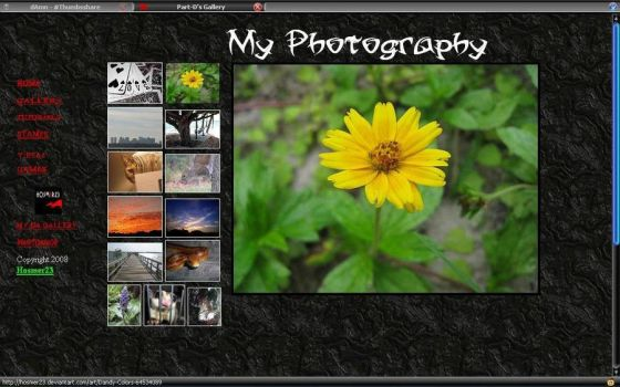 My Gallery Site by hosmer23