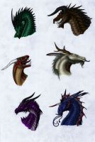Dragon heads, color by Dragonlover92