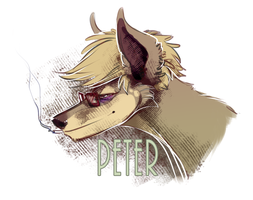 Peter head by Krawatorii