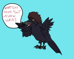Herp Derp New Hair by Marcel-the-Crow