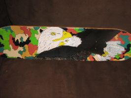 american eagle skateboard by brolicdesigns