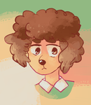 he is a toy poodle by haemorrhoid