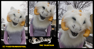 SnowBunny almost done and VIDEEEO by Grizzled-Dog