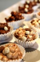 Chocolate Nibbles by claremanson