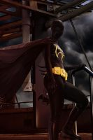 A Stormy Knight in Gotham by UltimaGuise