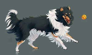 collie by Mr-SKID