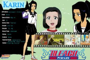 Karin Profile by Revy11